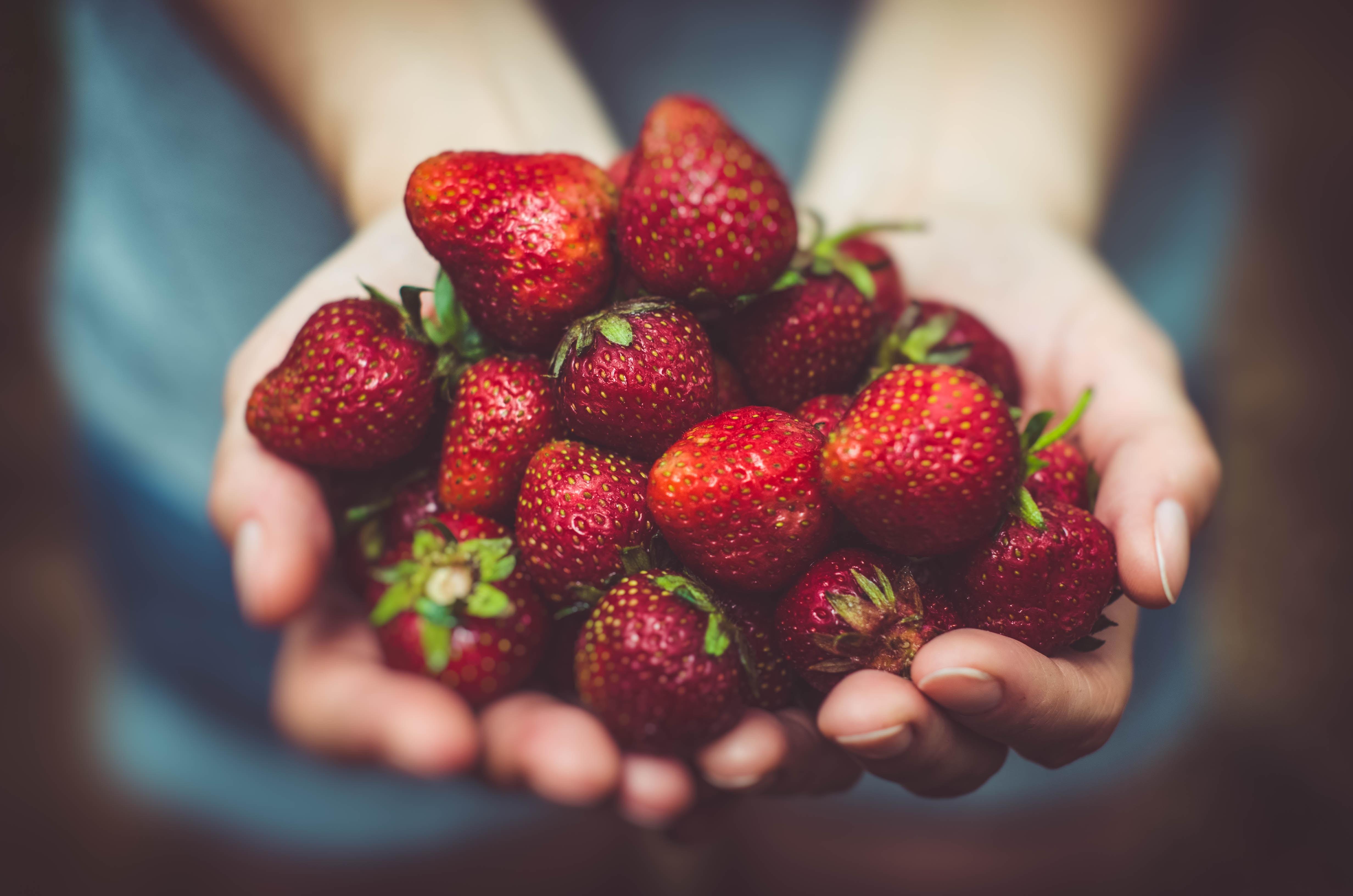 Jakie warzywa i owoce przechowywać w lodówce?
